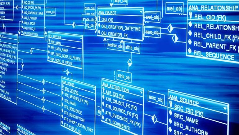 Software de Casinos Online